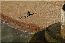 TQ3103 : Quiet day on Brighton Beach by Peter Trimming