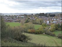 SX9491 : The St Loyes area of Heavitree, Exeter by David Smith