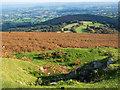 SO2711 : Bracken slope descending on south-east side of Blorenge by Trevor Littlewood