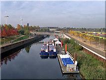 TQ3784 : Waterworks River, Queen Elizabeth Olympic Park by David Dixon