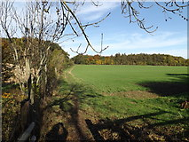 TL1814 : Footpath to Gustard Wood by Geographer