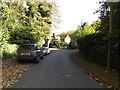 TL1916 : Hill Farm Lane, Ayot St.Lawrence by Adrian Cable