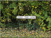TL1614 : Cherry Tree Lane sign by Adrian Cable