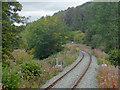 SJ0843 : The Llangollen Railway east of Corwen, Denbighshire by Roger  Kidd