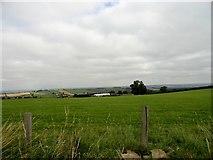 NZ0859 : Looking north towards Hedley Park Farm by Robert Graham