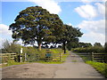 SK6048 : West end of Spindle Lane, south of Calverton by Richard Vince