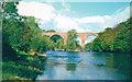 NY6758 : Lambley Viaduct, 1966 by Walter Dendy, deceased