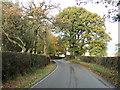 SJ5951 : Nantwich Road by JThomas
