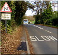 ST5296 : Warning sign - bends for half a mile ahead beyond St Arvans by Jaggery
