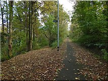 NS3174 : Path to Birkmyre Park from the cycle route by Lairich Rig