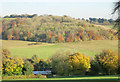 SU7897 : Yoseden Wood from across the valley by Des Blenkinsopp