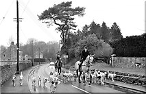 ST8080 : Beaufort Hunt, Acton Turville, Gloucestershire 2015 by Ray Bird