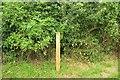 SU1415 : Waymark post, Avon Valley Path by Derek Harper
