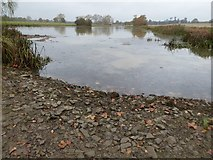 SO8843 : Low water levels on Croome River by Philip Halling