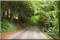 SU1339 : Road to Wilsford by Derek Harper
