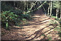 ST1792 : Sirhowy Valley Walk above Ynysddu by M J Roscoe