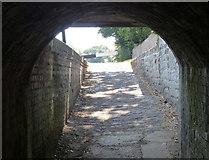 SJ9214 : Towpath under Penkridge Bridge No 86 by Mat Fascione