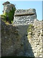 TQ6404 : World War II pill box in Pevensey Castle by Philip Halling