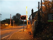TQ2151 : Level crossing at Betchworth Station by David Howard