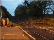 TQ2151 : The railway line at Betchworth Station by David Howard