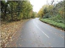 TQ1956 : Headley Road, Tyrrell's Wood by David Howard