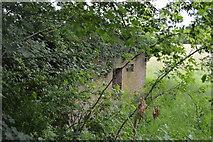 TQ5243 : Hidden pillbox by N Chadwick