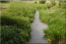 TQ5243 : River Eden by N Chadwick