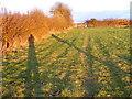 SO8693 : Trysull Shadows by Gordon Griffiths