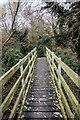TL3647 : Footbridge over River Rhee by Kim Fyson