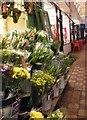 SP5106 : Market Flowers by Gordon Griffiths