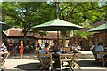 ST7733 : Outdoor tables, Spread Eagle, Stourhead by Derek Harper