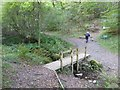 SD3394 : Footbridge in Grizedale Forest by David Smith