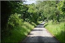 TQ4944 : Lane to Chiddingstone by N Chadwick