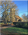 TL6852 : Little Bradley: bare trees and a round tower by John Sutton