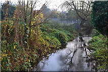 TQ5571 : River Darent at the bottom of Darenth Hill by David Martin
