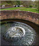 SO8687 : Circular Overflow, Staffordshire and Worcestershire Canal by Mat Fascione