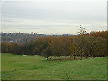 SD8304 : Heaton Park Golf Club (1) by Carroll Pierce