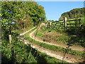 SO8808 : Down Hill track - Painswick, Gloucestershire by Martin Richard Phelan