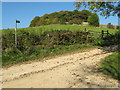 SO8808 : Downhill Mound 1 - Painswick, Gloucestershire by Martin Richard Phelan