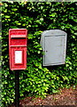 SO6203 : Queen Elizabeth II postbox in a Lydney hedge by Jaggery