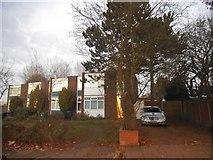 TQ2087 : Houses on Townsend Lane, Kingsbury by David Howard