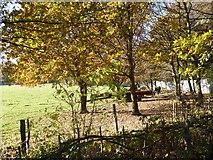 TQ4476 : Scene on Woodlands Farm by Marathon