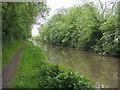 SP3783 : Oxford Canal Walk by Shaun Ferguson