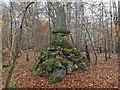 NH8049 : Memorial Obelisk Kilvarock Woods by valenta
