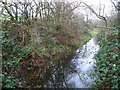SE3704 : The former Worsbrough branch, Dearne & Dove Canal [6] by Christine Johnstone