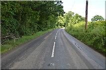 TQ5345 : Penshurst Rd by N Chadwick