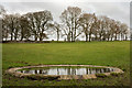 SK1572 : Field with dew pond and trees by Trevor Littlewood