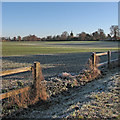 TL4748 : Whittlesford: a frosty morning by John Sutton