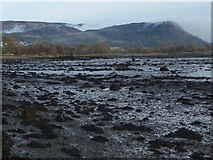 NS4074 : The shore near Dumbarton Rock by Lairich Rig