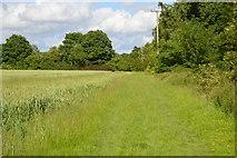 TQ5246 : Footpath along the edge of Redleaf Wood by N Chadwick